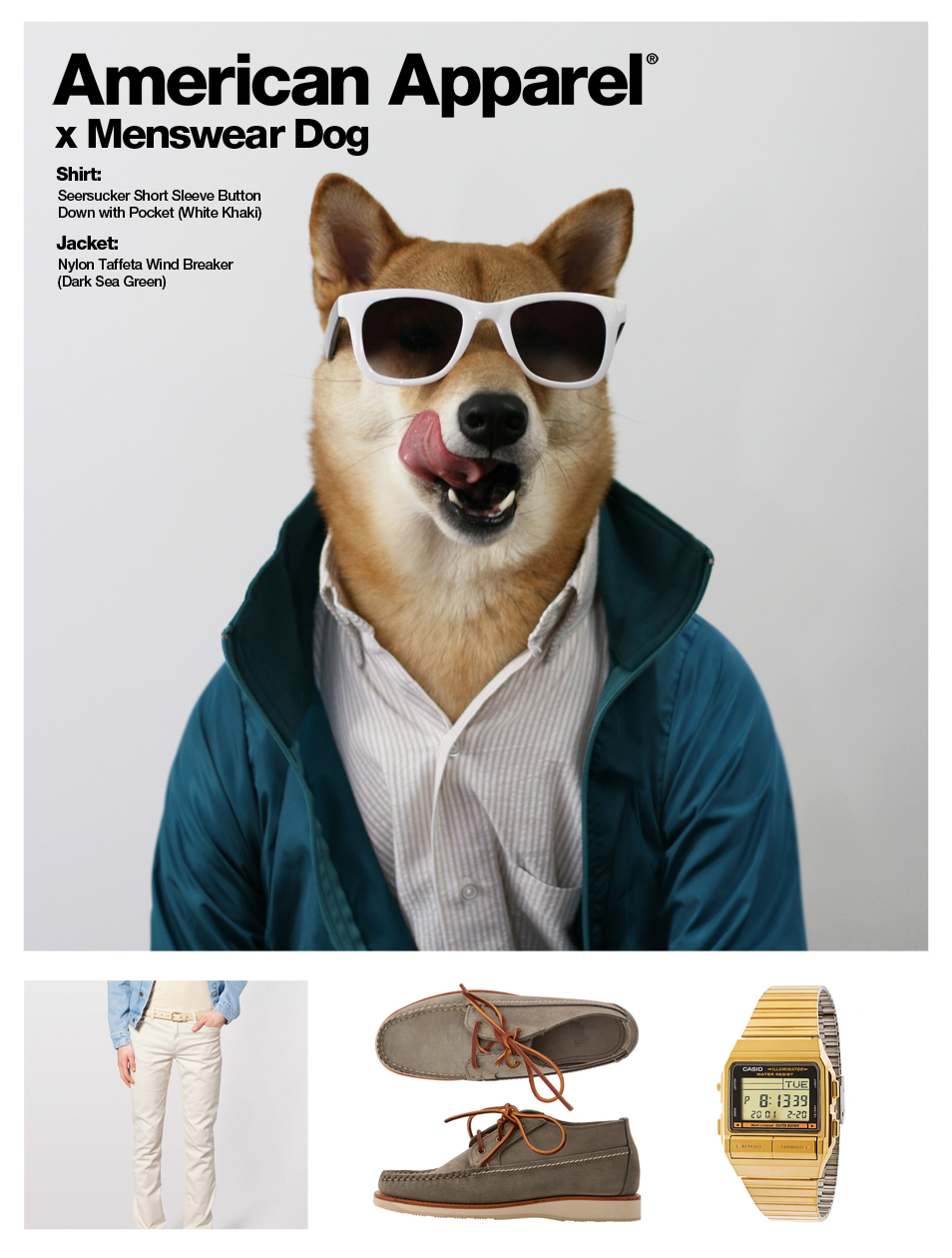manchic-mensweardog-americanapparel-2